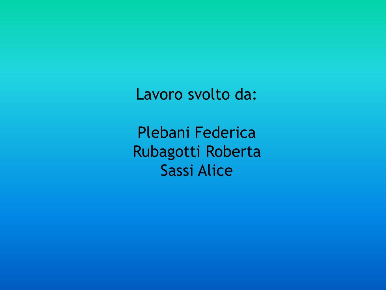 Lavoro svolto da: Plebani Federica Rubagotti Roberta Sassi Alice