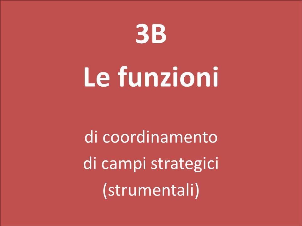 3B Le funzioni di coordinamento di campi strategici (strumentali)
