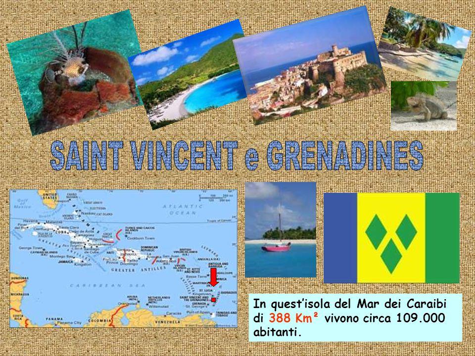 269 Km² è la superficie di questo Paese caraibico di 41.000 abitanti e la più piccola delle due isole,Nevis,che lo compongono ha diritto di secessione.