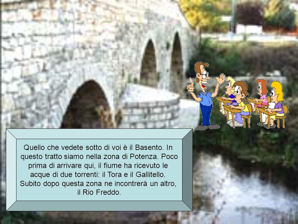 ECCO QUALCHE ALTRA INFORMAZIONE: Nei pressi della stazione di Vaglio riceve le acque del torrente Tiera.