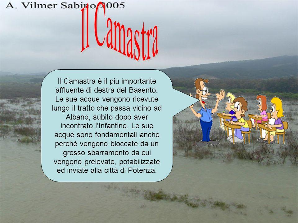 Il Camastra è il più importante affluente di destra del Basento. Le sue acque vengono ricevute lungo il tratto che passa vicino ad Albano, subito dopo