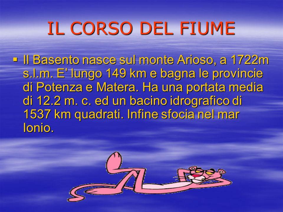IL CORSO DEL FIUME Il Basento nasce sul monte Arioso, a 1722m s.l.m. E lungo 149 km e bagna le provincie di Potenza e Matera. Ha una portata media di