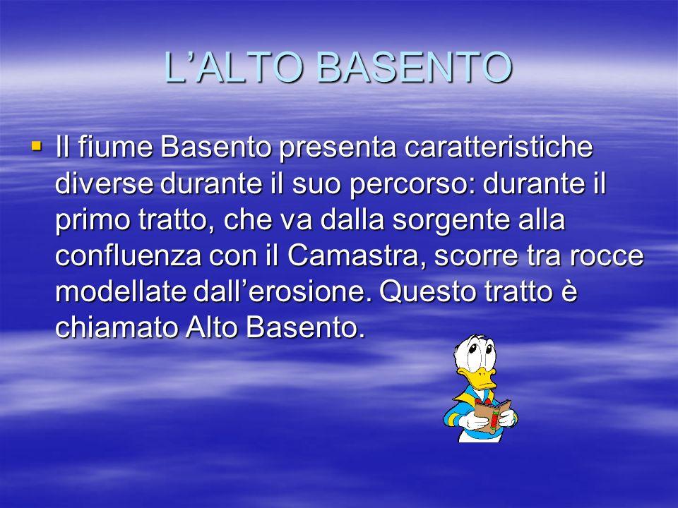 LALTO BASENTO Il fiume Basento presenta caratteristiche diverse durante il suo percorso: durante il primo tratto, che va dalla sorgente alla confluenz