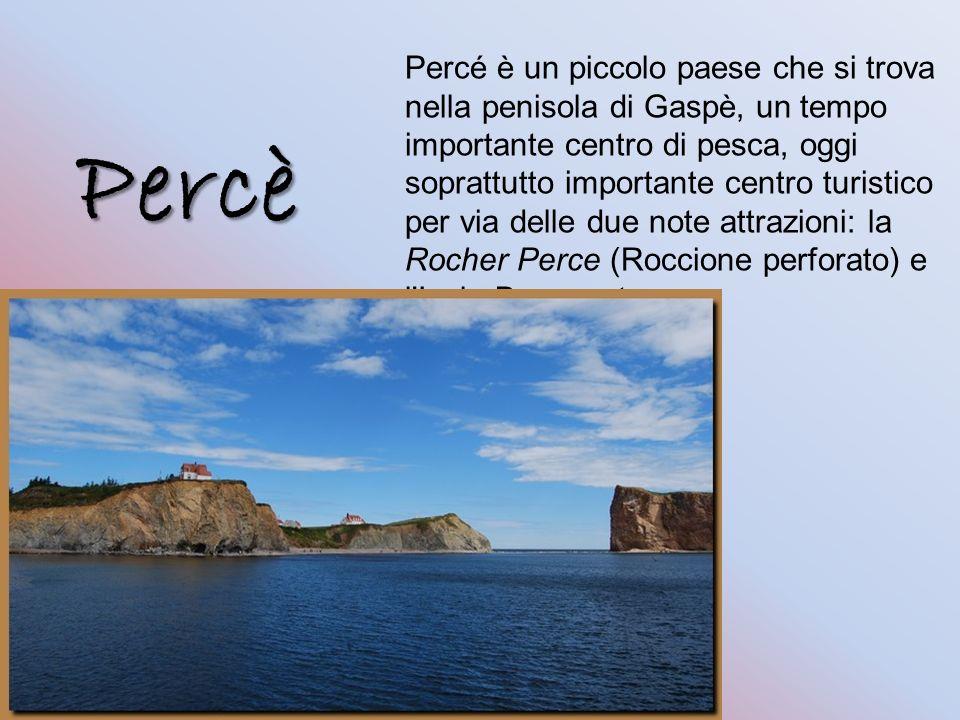 Percè Percé è un piccolo paese che si trova nella penisola di Gaspè, un tempo importante centro di pesca, oggi soprattutto importante centro turistico per via delle due note attrazioni: la Rocher Perce (Roccione perforato) e l Isola Bonaventura.