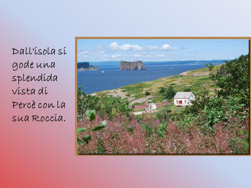 Dall isola si gode una splendida vista di Percè con la sua Roccia.