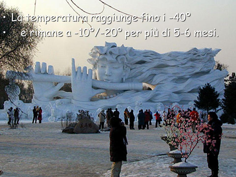 La temperatura raggiunge fino i -40ºLa temperatura raggiunge fino i -40º e rimane a -10º/-20º per più di 5-6 mesi.