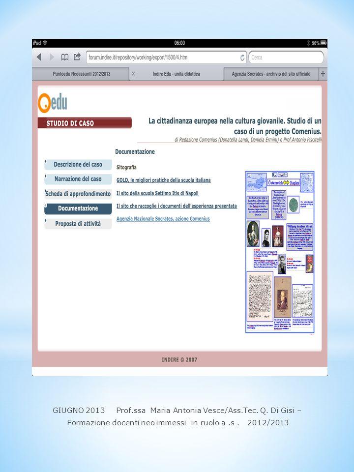 GIUGNO 2013 Prof.ssa Maria Antonia Vesce/Ass.Tec. Q. Di Gisi – Formazione docenti neo immessi in ruolo a.s. 2012/2013