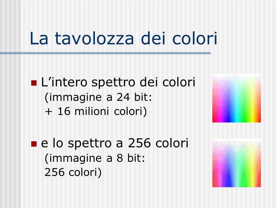 Limmagine true-color 24 bit: 8 bit per ciascun colore principale