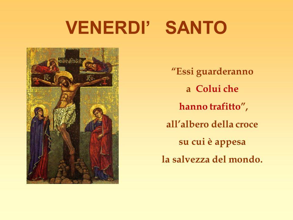 VENERDI SANTO Essi guarderanno a Colui che hanno trafitto, allalbero della croce su cui è appesa la salvezza del mondo.