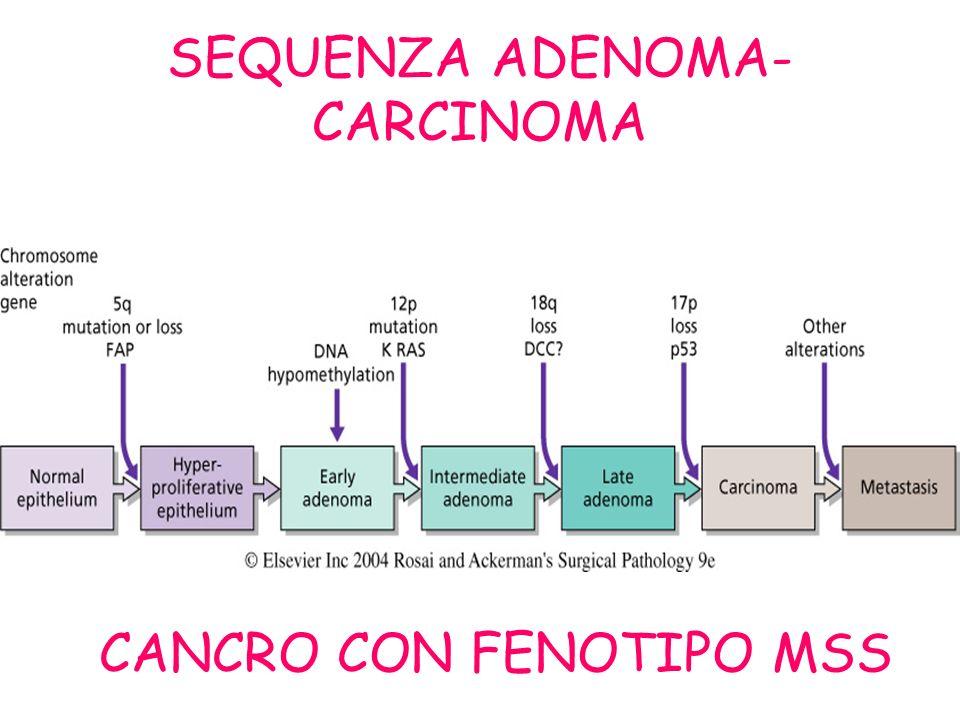 SEQUENZA ADENOMA- CARCINOMA CANCRO CON FENOTIPO MSS