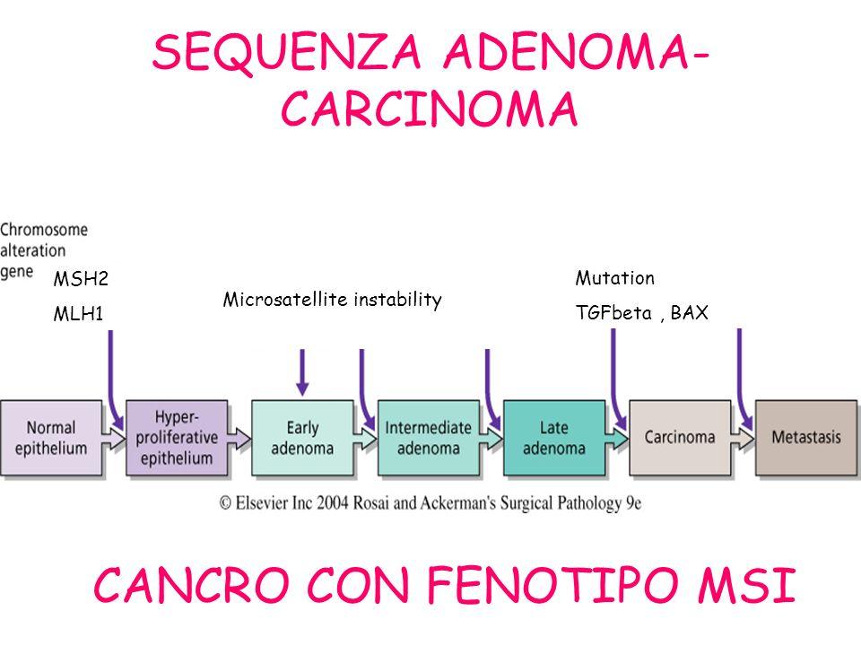 SEQUENZA ADENOMA- CARCINOMA CANCRO CON FENOTIPO MSI MSH2 MLH1 Microsatellite instability Mutation TGFbeta, BAX
