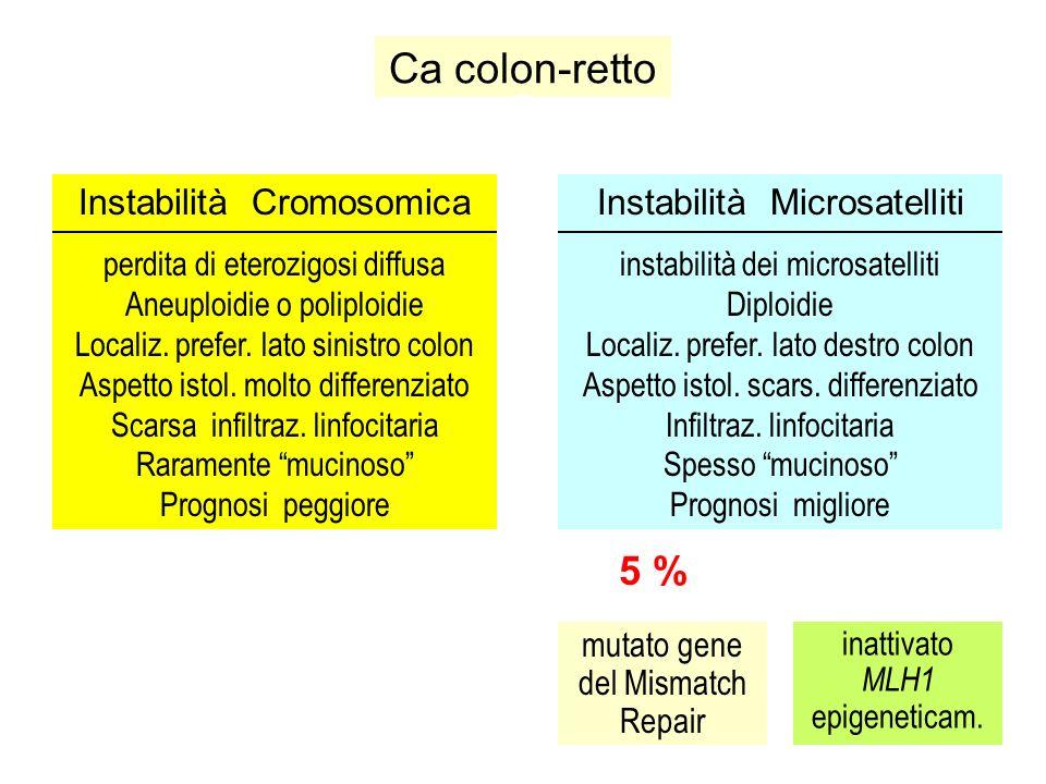 Ca colon-retto Instabilità Cromosomica perdita di eterozigosi diffusa Aneuploidie o poliploidie Localiz. prefer. lato sinistro colon Aspetto istol. mo