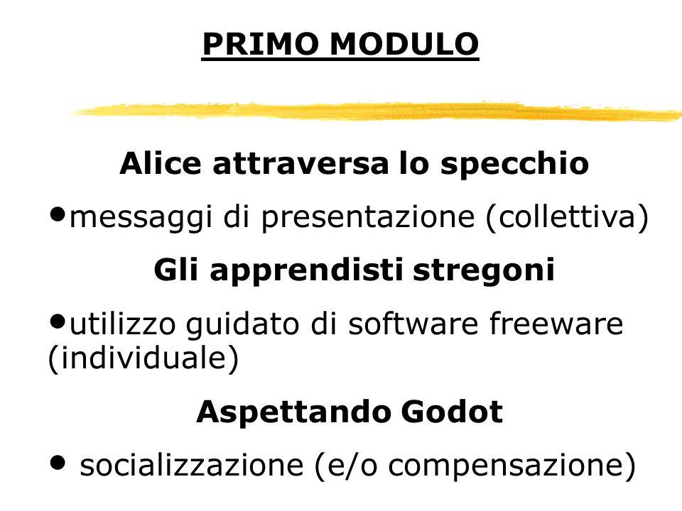 Alice attraversa lo specchio messaggi di presentazione (collettiva) Gli apprendisti stregoni utilizzo guidato di software freeware (individuale) Aspet