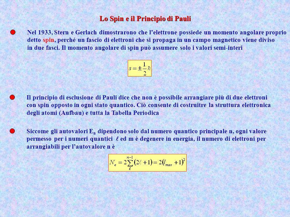 Nel 1933, Stern e Gerlach dimostrarono che lelettrone possiede un momento angolare proprio detto spin, perché un fascio di elettroni che si propaga in
