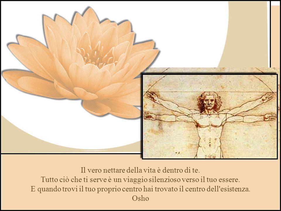 Ho imparto che, per essere sereni, bisogna conoscere i confini delle nostre possibilità, e amarci come siamo.. Romano Battaglia