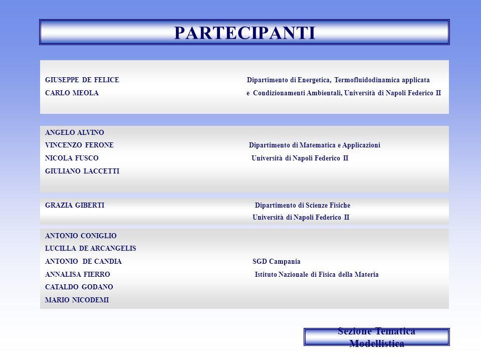 PARTECIPANTI ANGELO ALVINO VINCENZO FERONE Dipartimento di Matematica e Applicazioni NICOLA FUSCO Università di Napoli Federico II GIULIANO LACCETTI G