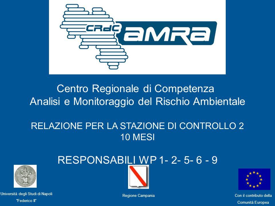 Centro Regionale di Competenza Analisi e Monitoraggio del Rischio Ambientale WP9 – S.