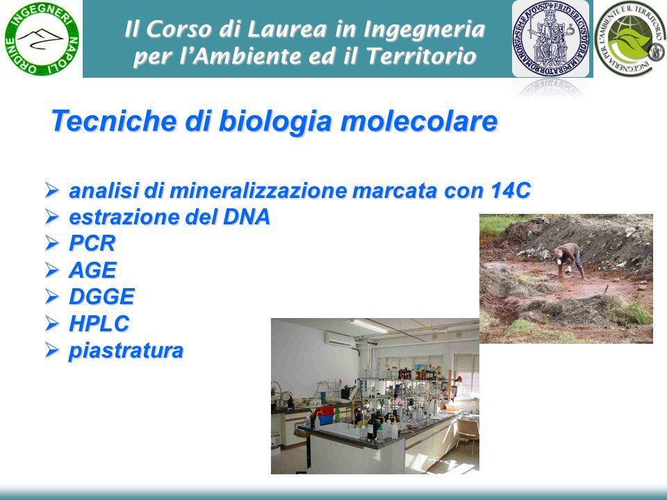 Il Corso di Laurea in Ingegneria per lAmbiente ed il Territorio Tecniche di biologia molecolare analisi di mineralizzazione marcata con 14C analisi di