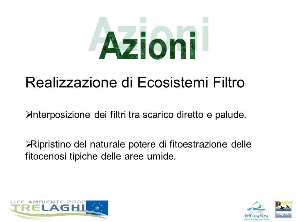 Realizzazione di Ecosistemi Filtro Interposizione dei filtri tra scarico diretto e palude. Ripristino del naturale potere di fitoestrazione delle fito