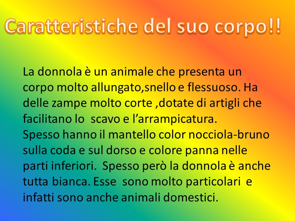 La donnola è un animale che presenta un corpo molto allungato,snello e flessuoso.
