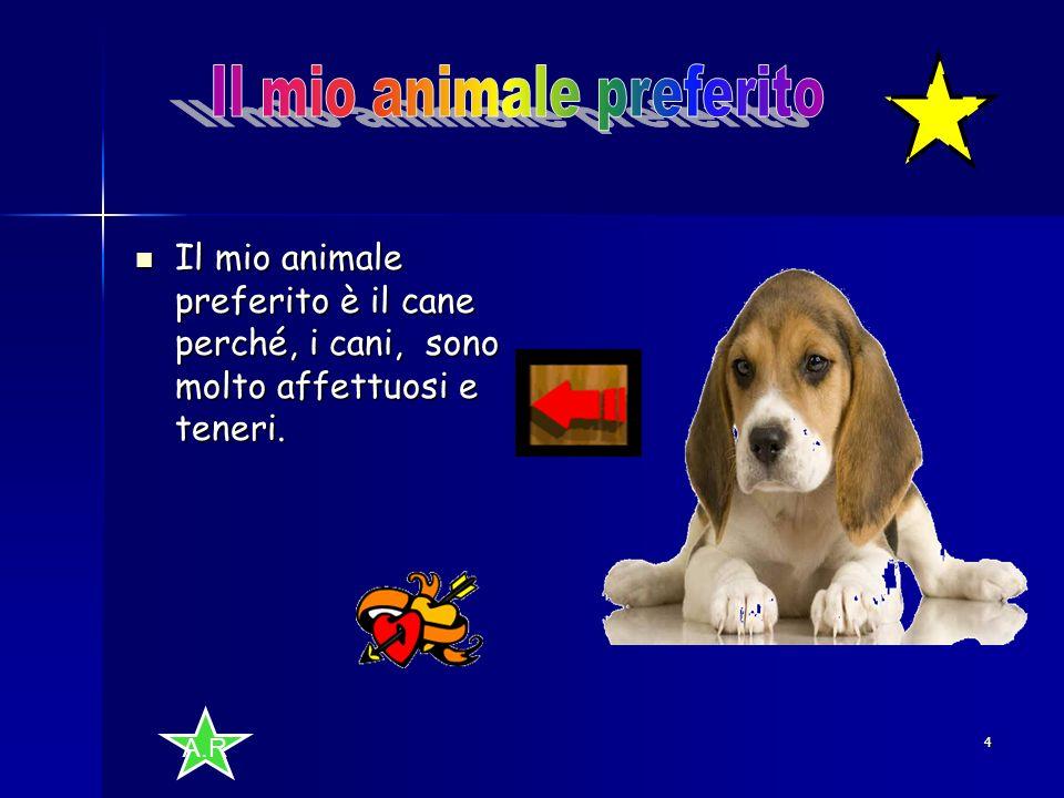 A.R 4 Il mio animale preferito è il cane perché, i cani, sono molto affettuosi e teneri.