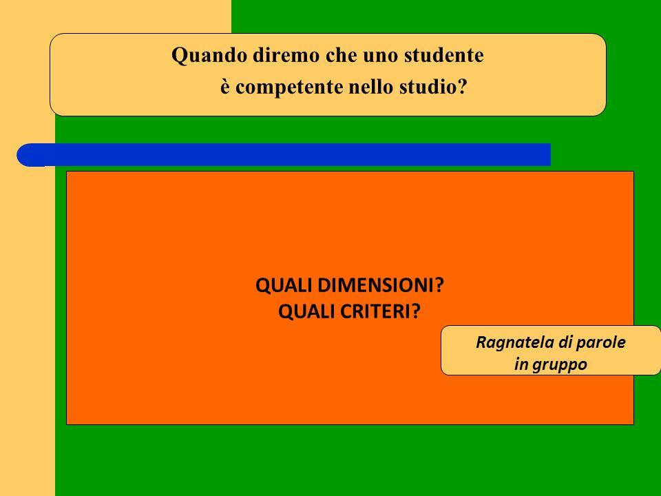 Quando diremo che uno studente è competente nello studio? QUALI DIMENSIONI? QUALI CRITERI? Ragnatela di parole in gruppo