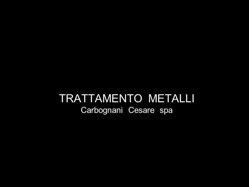 TRATTAMENTO METALLI Carbognani Cesare spa