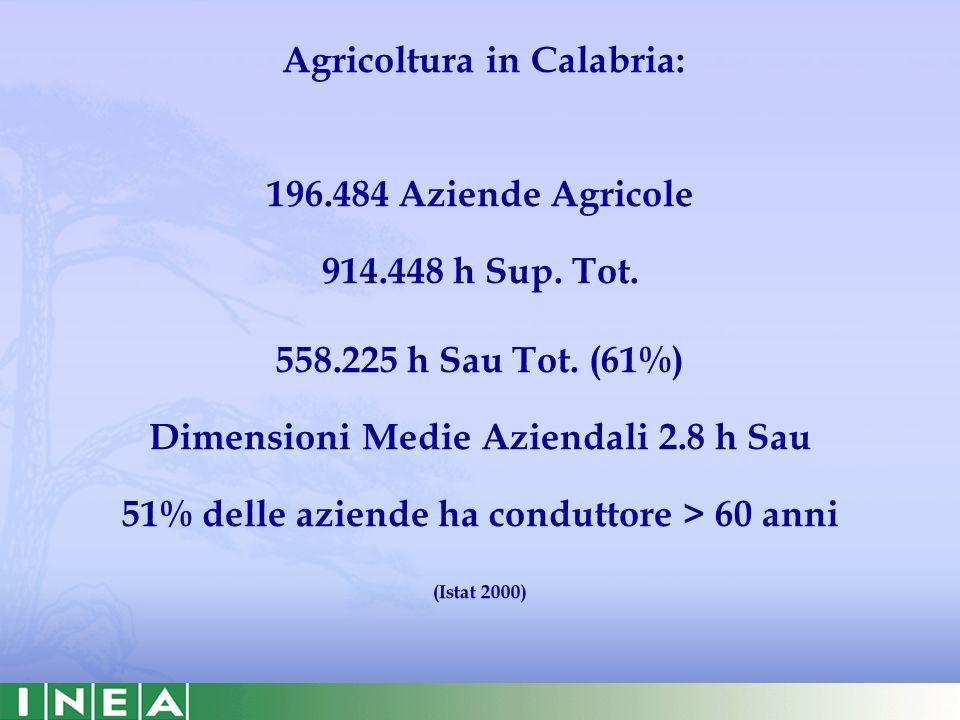 19811991200120062007 Calabria2.5218.69018.00032.99335.216 La presenza degli stranieri in Calabria: Residenti Età media = 34 Anni 24% Marocco; 15% Ucraina; 8% Romania; 7% Polonia Soggiornanti 199520002001200220032004200520062007 Calabria7.97215.31513.65417.59833.48524.77727.78118.44816.639 Motivo del soggiorno: Lavoro subordinato (anche stagionale) 61% Ricongiungimento familiare 34% Fonte: ISTAT.