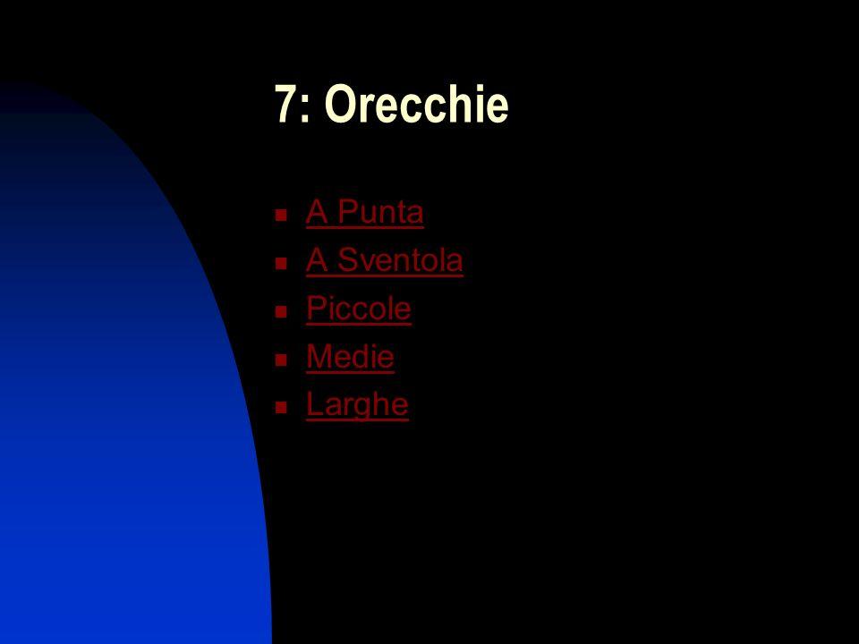 8: Forma del Viso Ovale Stretta Piena Magra Rotonda Ad Uovo