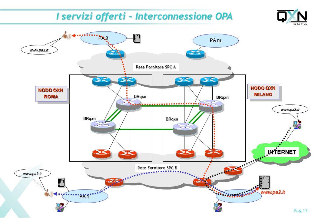 Pag 13 I servizi offerti – Interconnessione OPA Rete Fornitore SPC A Rete Fornitore SPC B NODO QXN ROMA ROMA MILANO MILANO BRqxn BRqxn BRqxn BRqxn PA m PA 1 PA 3 PA 2 www.pa2.it www.pa2.it www.pa2.it INTERNET www.pa2.it