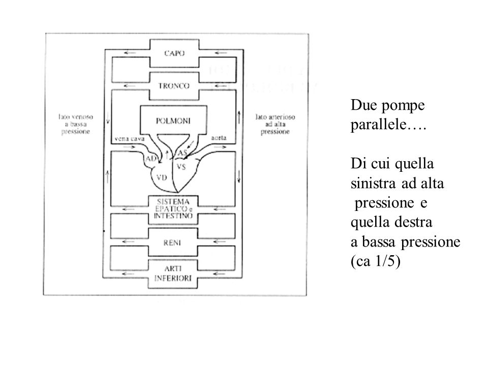 Due pompe parallele…. Di cui quella sinistra ad alta pressione e quella destra a bassa pressione (ca 1/5)