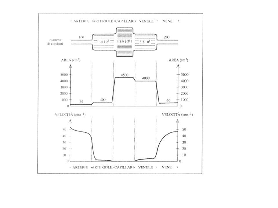 LACCOPPIAMENTO POMPA-CIRCUITO Come in tutti i sistemi artificiali, è di fondamentale importanza che laccoppiamento sia adeguato.