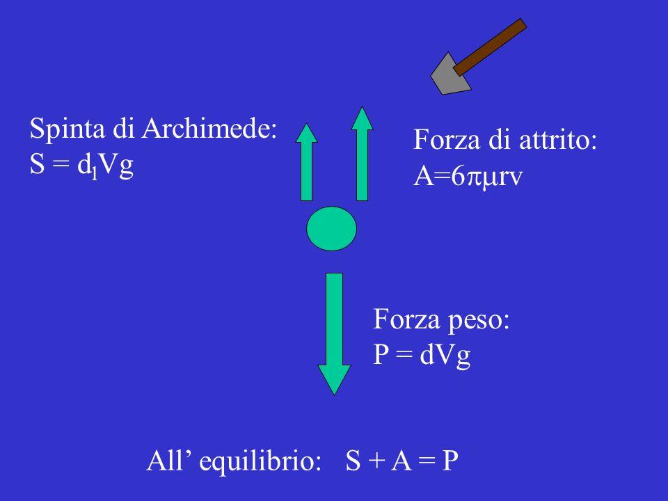Forza peso: P = dVg Spinta di Archimede: S = d l Vg Forza di attrito: A=6 rv All equilibrio: S + A = P