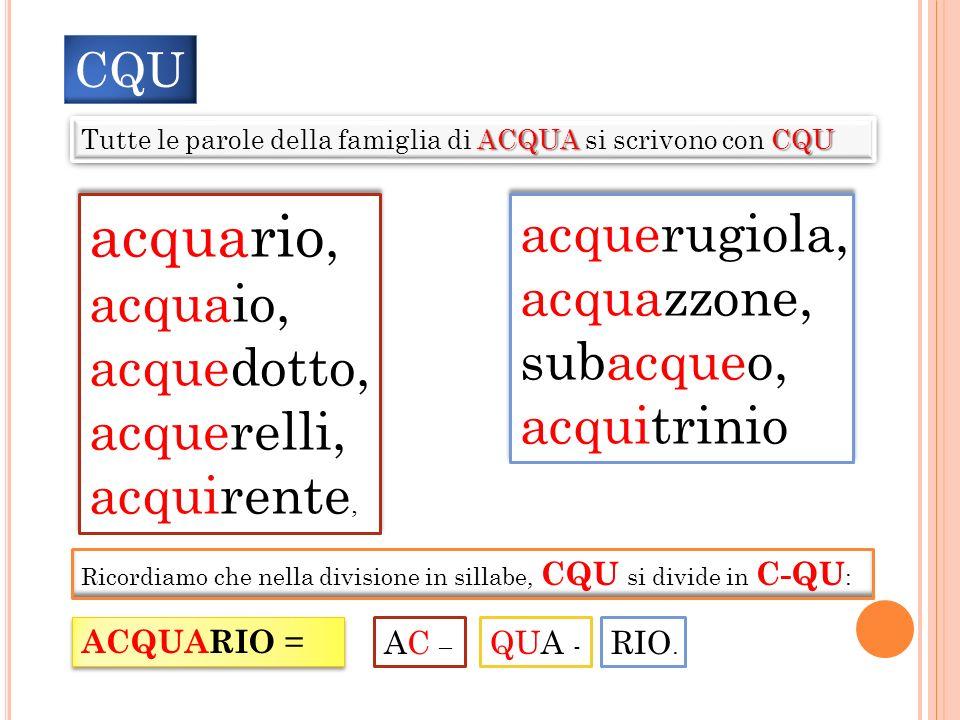 CQU ACQUACQU Tutte le parole della famiglia di ACQUA si scrivono con CQU acquario, acquaio, acquedotto, acquerelli, acquirente, acquario, acquaio, acq