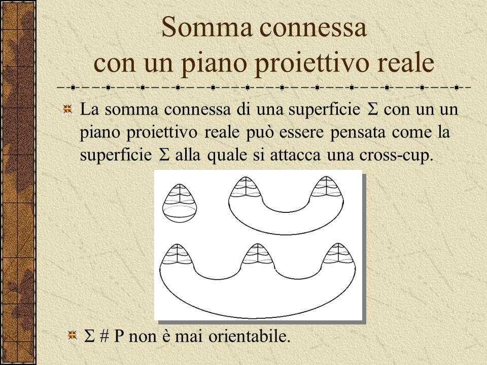 Somma connessa con un toro o con un piano proiettivo reale La somma connessa di due tori è un toro a due manici (con due buchi): La somma connessa di