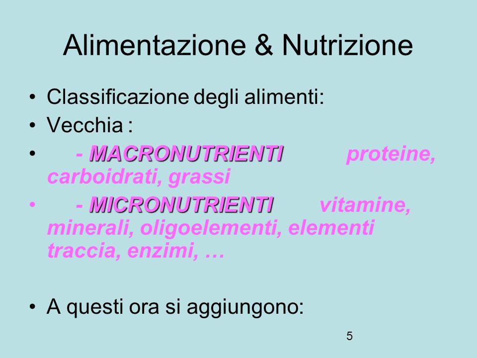 6 Alimentazione & Nutrizione NON NUTRIENTI BIOATTIVINON NUTRIENTI BIOATTIVI fibre alimentari ANTIOSSIDANTI NON VITAMINICIANTIOSSIDANTI NON VITAMINICI polifenoli ESSENZIALIESSENZIALI vitamine, acidi grassi, alcuni aminoacidi