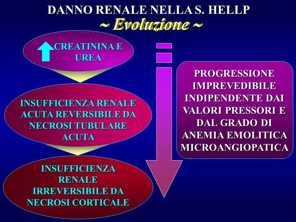 DANNO EPATICO NELLA S. HELLP FORMAZIONE DI MICROTROMBI NEI SINUSOIDI NECROSI PERIPORTALE ROTTURA DELLA GLISSONIANA FORMAZIONE DI EMATOMA SUBCAPSULARE