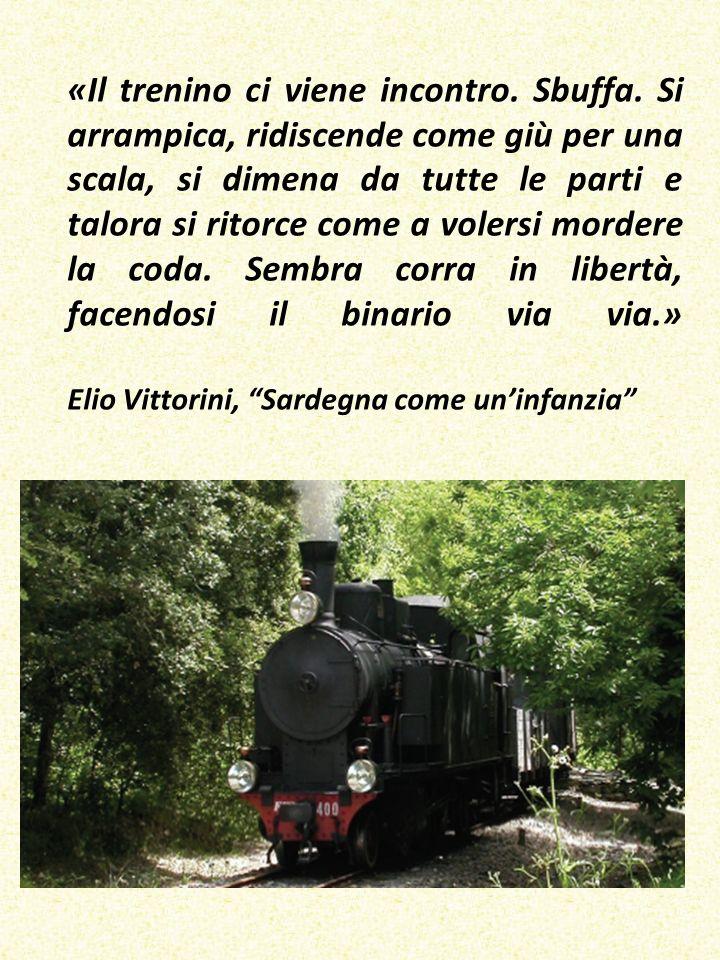 «Il trenino ci viene incontro.Sbuffa.