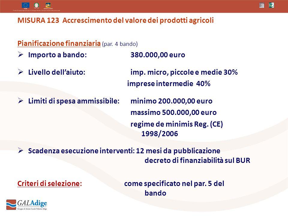 MISURA 123 Accrescimento del valore dei prodotti agricoli Pianificazione finanziaria (par.