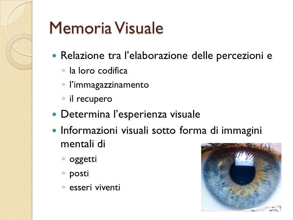 Memoria Visuale Relazione tra lelaborazione delle percezioni e la loro codifica limmagazzinamento il recupero Determina lesperienza visuale Informazio