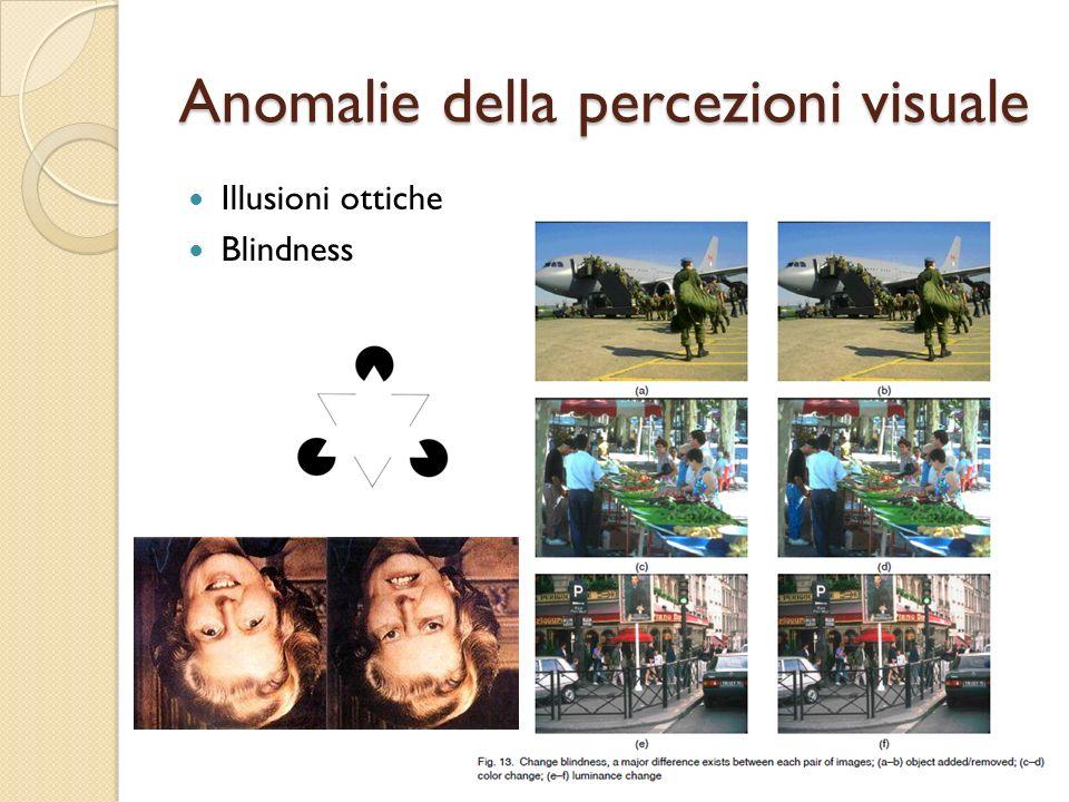 Anomalie della percezioni visuale Illusioni ottiche Blindness