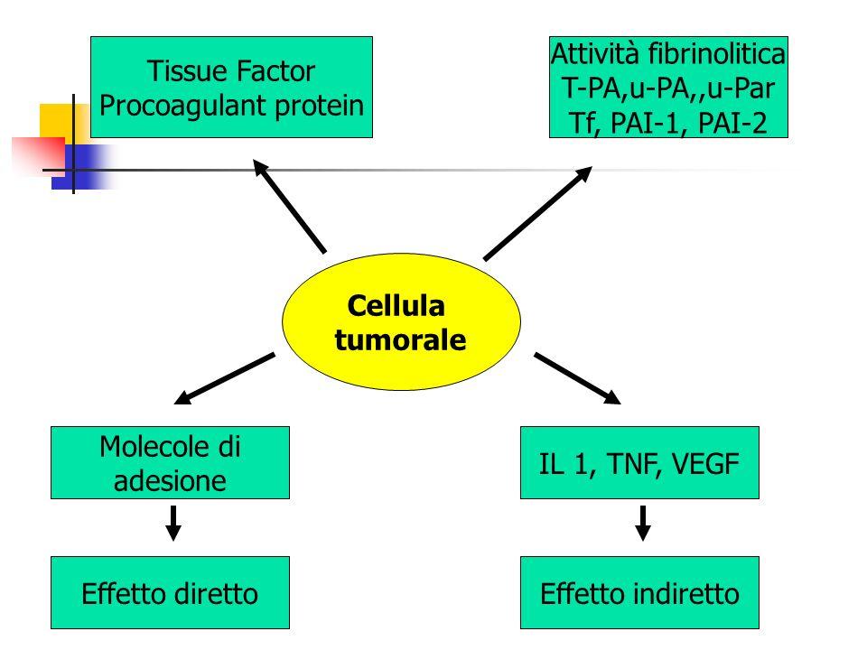 Cellula tumorale Tissue Factor Procoagulant protein Attività fibrinolitica T-PA,u-PA,,u-Par Tf, PAI-1, PAI-2 Molecole di adesione Effetto diretto IL 1