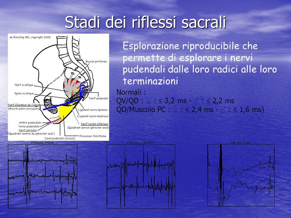 Stadi dei riflessi sacrali Normali : QV/QD : : 3,2 ms - : 2,2 ms QD/Muscolo PC : : 2,4 ms - : 1,6 ms) Esplorazione riproducibile che permette di esplorare i nervi pudendali dalle loro radici alle loro terminazioni