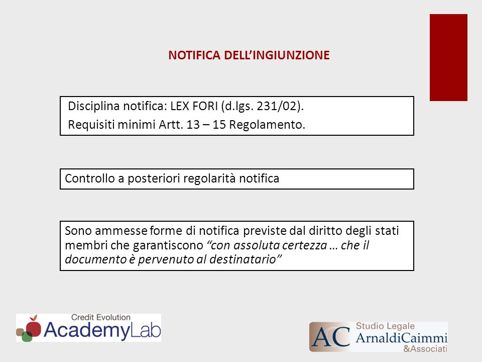 NOTIFICA DELLINGIUNZIONE Disciplina notifica: LEX FORI (d.lgs. 231/02). Requisiti minimi Artt. 13 – 15 Regolamento. Controllo a posteriori regolarità