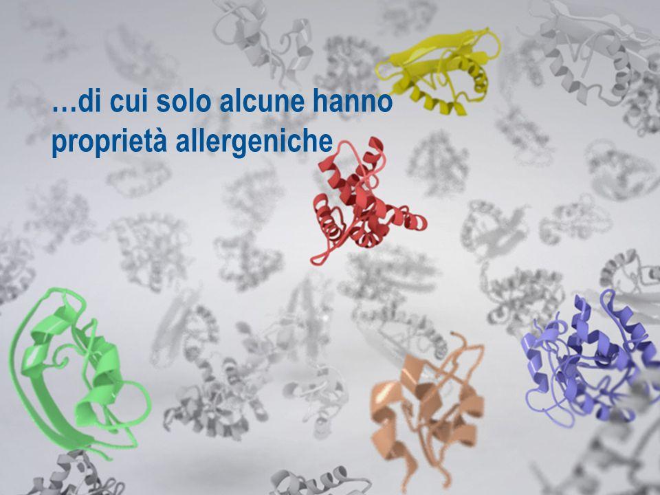…contiene milioni di molecole…. …di cui solo alcune hanno proprietà allergeniche