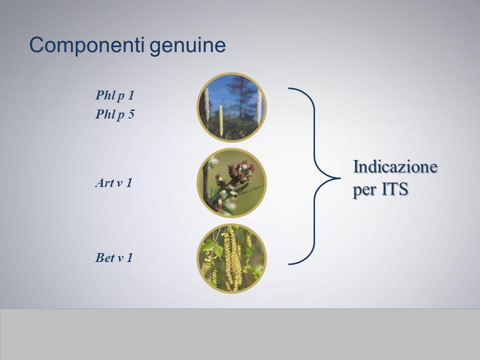 Componenti genuine Bet v 1 Art v 1 Phl p 1 Phl p 5 Indicazione per ITS