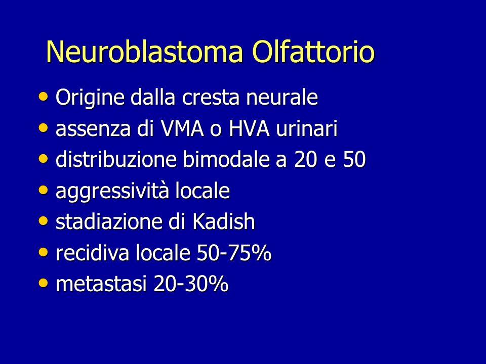 Neuroblastoma Olfattorio Origine dalla cresta neurale Origine dalla cresta neurale assenza di VMA o HVA urinari assenza di VMA o HVA urinari distribuz