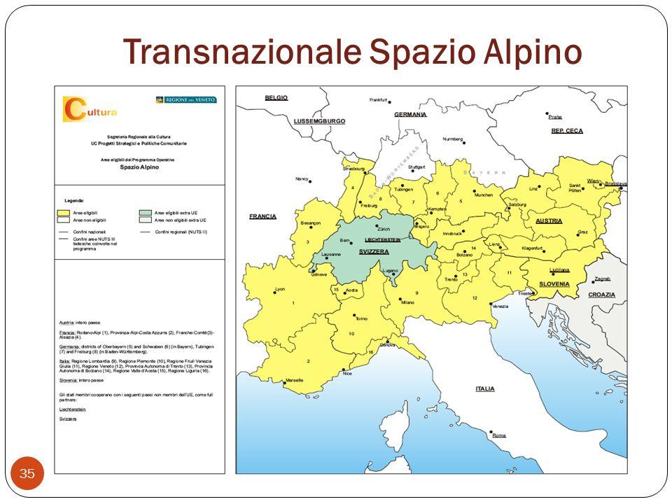 Transnazionale Spazio Alpino 35