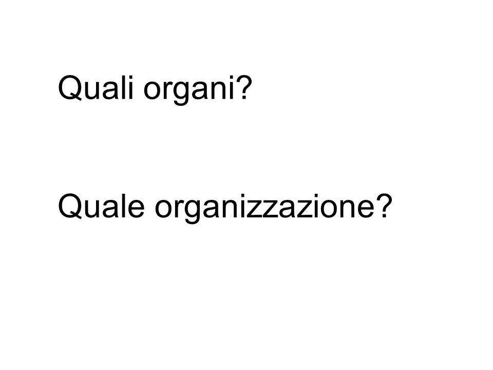 Quale organizzazione? Quali organi?