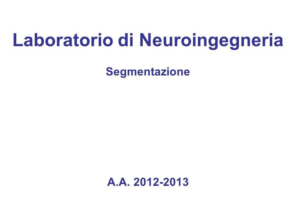 Laboratorio di Neuroingegneria Segmentazione A.A. 2012-2013